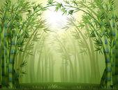 Fényképek Bambusz fák az erdő belsejében