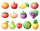 diversi tipi di frutta