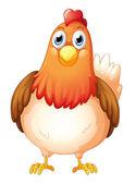 Fotografia una grosso grassa gallina