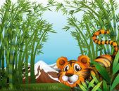 Fotografia una foresta di bambù con una tigre