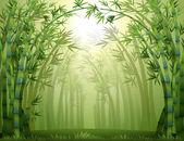 Fotografia una foresta di bambù verde