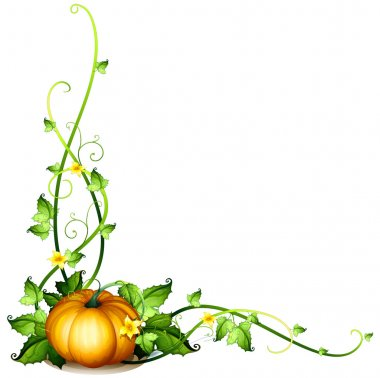 A pumpkin vine decor