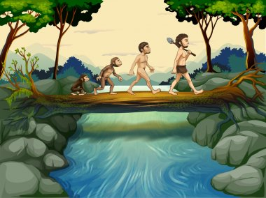 The evolution of man at the river