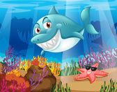 žralok a hvězdice pod vodou