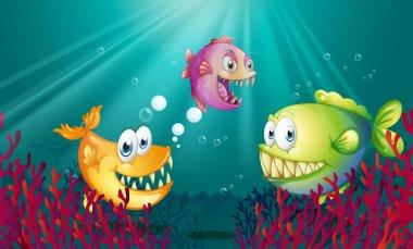 Piranhas under the sea with corals