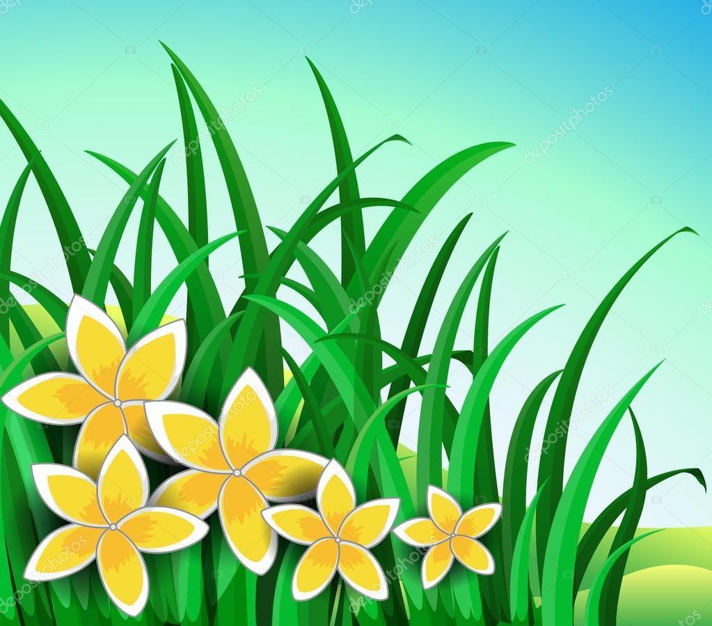 Illustration d\u0027un jardin avec grandes fleurs jaunes \u2014 Vecteur par