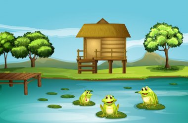 A pond with three playful frogs