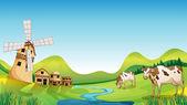 ein Bauernhof mit Stall und Kühen