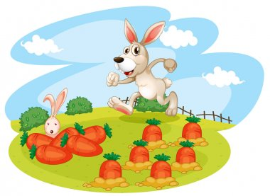 A bunny running along the garden with carrots