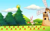 Fotografie A rabbit planting carrots