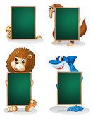 čtyři zvířata držení prázdná deska