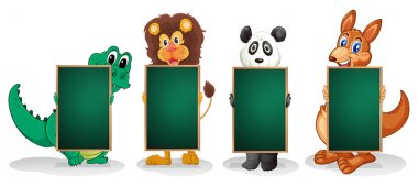 Four animals forming a line with empty blackboards