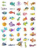 Fotografie Gruppe der verschiedenen Fische