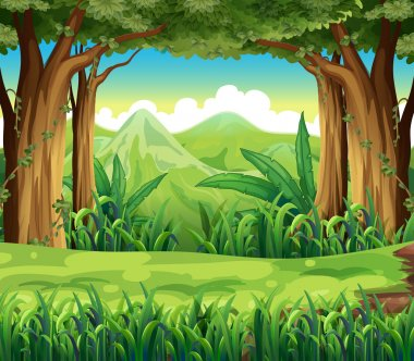 Illustration of the green forest stock vector