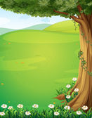 Fotografia una vista delle colline con un albero e fiori