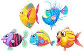Skupina usmívající se ryby