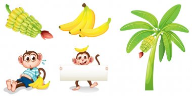 Bananas and monkeys with an empty signboard