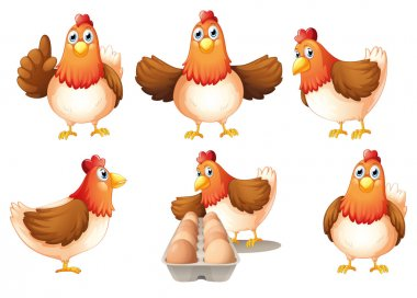 Illustration of a group of fat hens on a white background stock vector