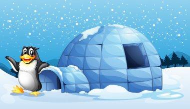 A penguin beside the igloo
