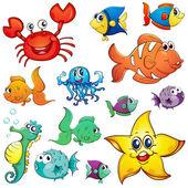 Fényképek Más tengeri élőlények