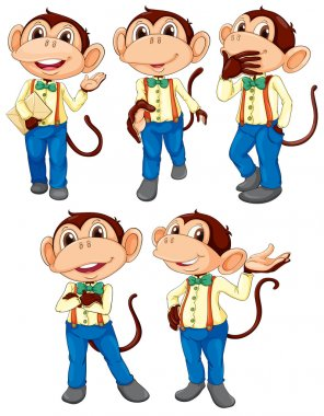 Five monkeys wearing blue jeans