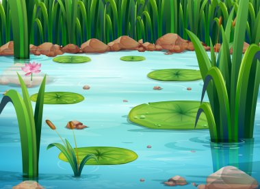Illustration of a pond with green plants stock vector