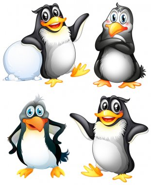 Four playful penguins