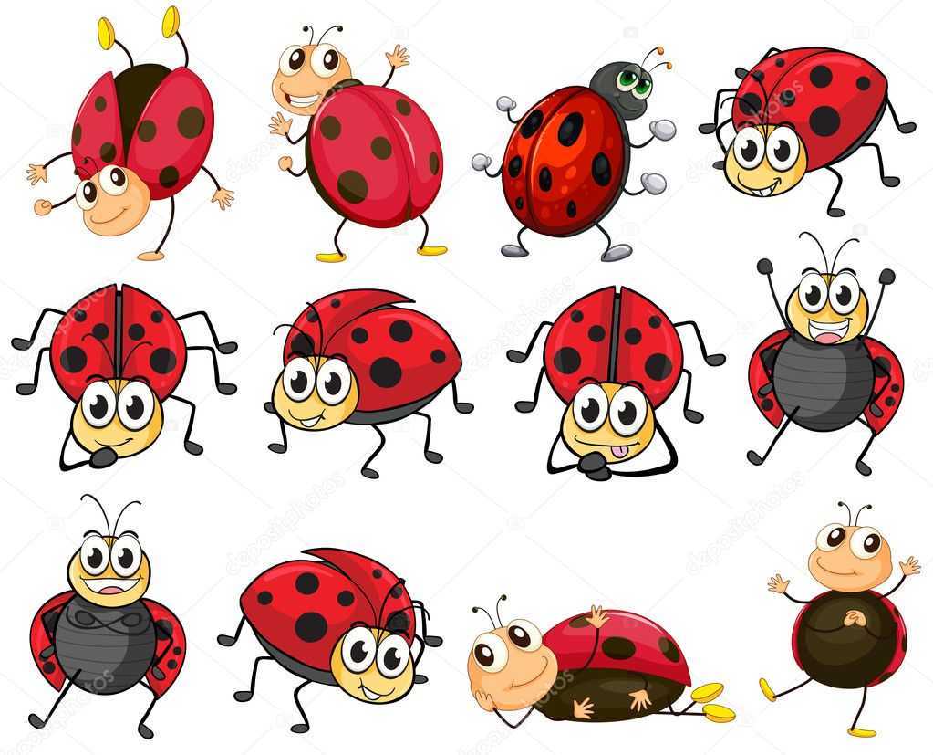 cute ladybugs stock vector  u00a9 interactimages 43544647 ladybug clip art borders ladybug clip art images free