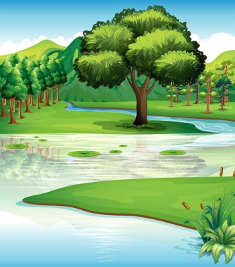 Land and water resources