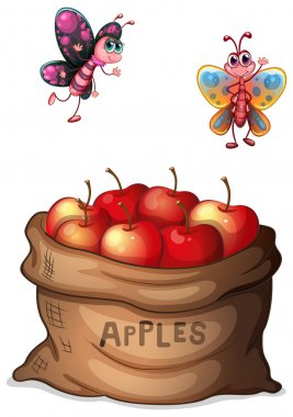 A sack of crunchy apples
