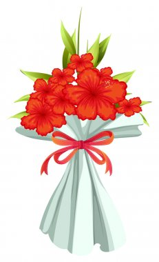 A boquet of red flowers