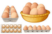 Fotografie Eggs