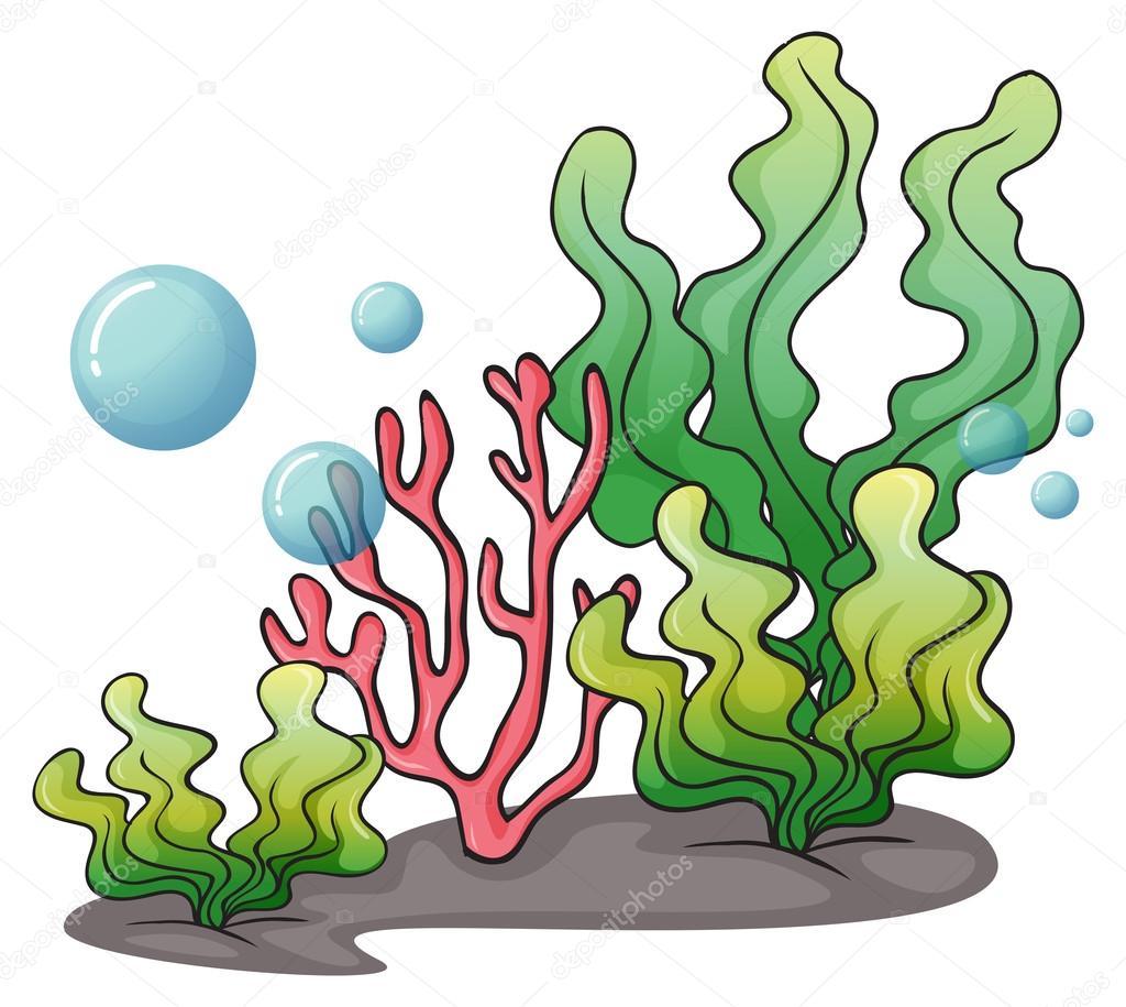海藻が海の下で ストックベクター Interactimages 51674749