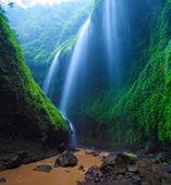 Photo Madakaripura Waterfall, East Java, Indonesia