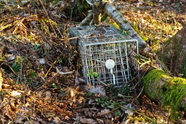 Small mammal trap