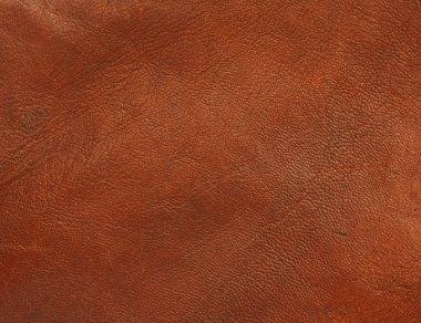 Polished shiny leather texture background