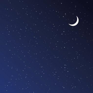 Night Sky. Vector illustration.