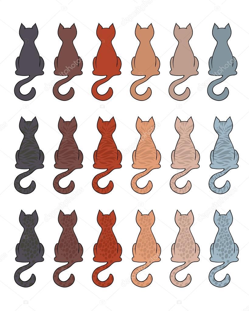 Cat fur color coats