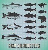 Fotografie Vektor festgelegt: Fisch-Silhouetten