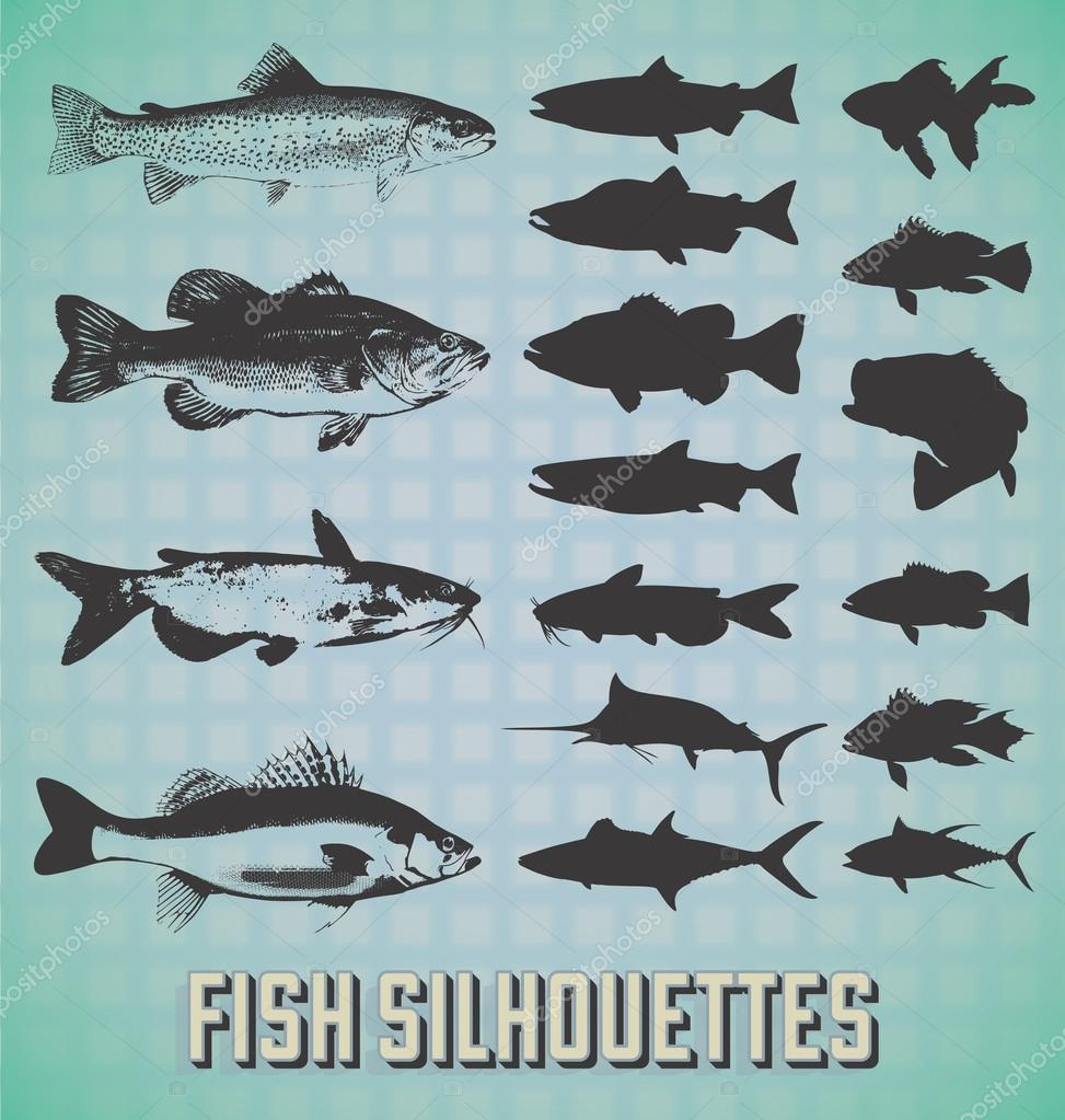 Vector Set: Fish Silhouettes