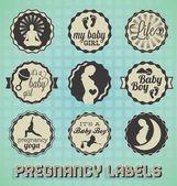 : Vektor Vintage těhotenství štítky a ikony
