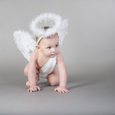 Infant baby with angel wings and nimbus