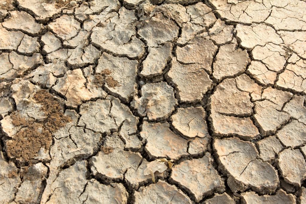 Drought land soil