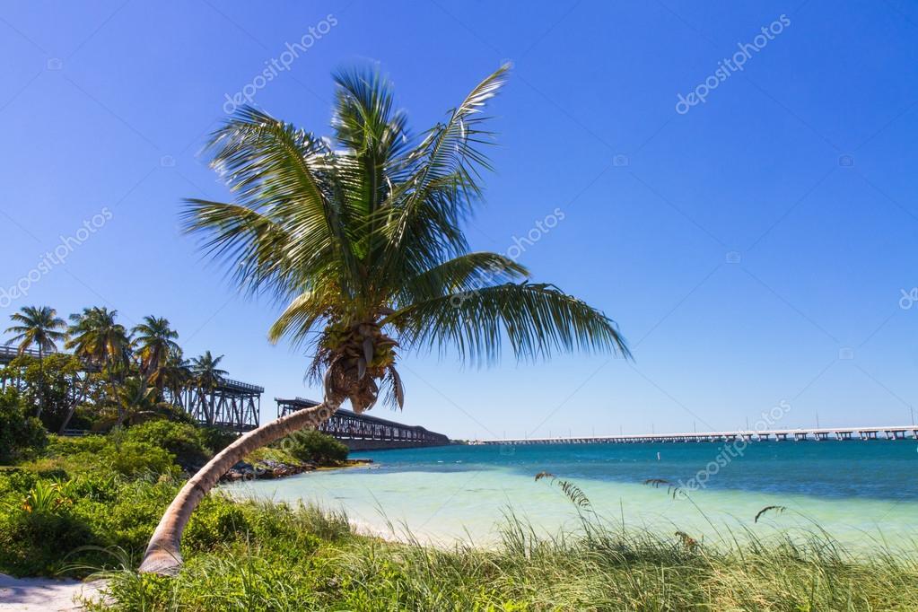 Landscape at Bahia Honda Beach