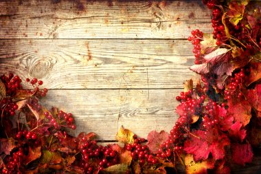 Autumn frame from ashberry and maple leaves on wooden plates with grunge texture
