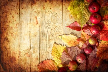 Vintage Autumn border from apples and fallen leaves on old wooden table
