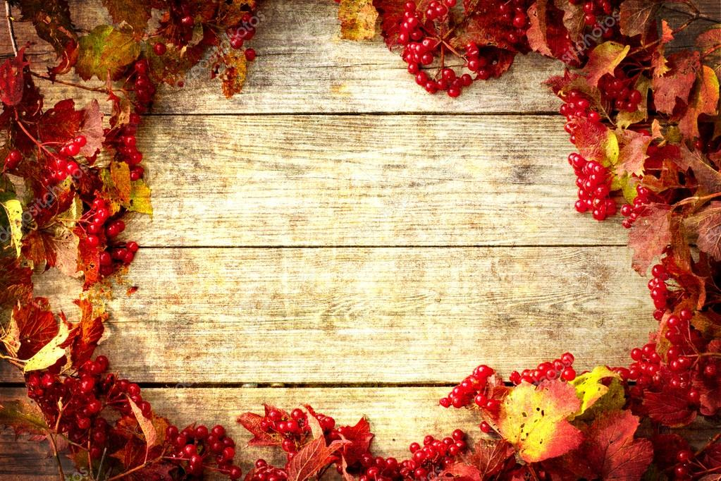 Vintage Autumn Border From Ashberry And Fallen Leaves On Old Wooden Table Thanksgiving Day Concept Photo By Avgustin