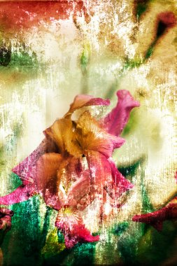 Beautiful spring background with pink flowers and purple blurs