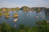Turistické hoduje v halong bay, vietnam