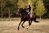 schönes Mädchen reitet auf einem Pferd auf dem Herbstfeld